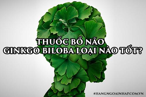 Thuốc bổ não Ginkgo Biloba loại nào tốt-1