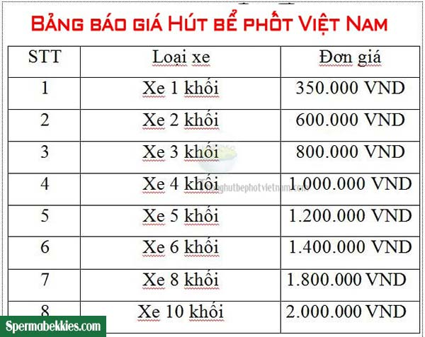 Réo tên 3 công ty hút bể phốt uy tín tại Hà Nội2